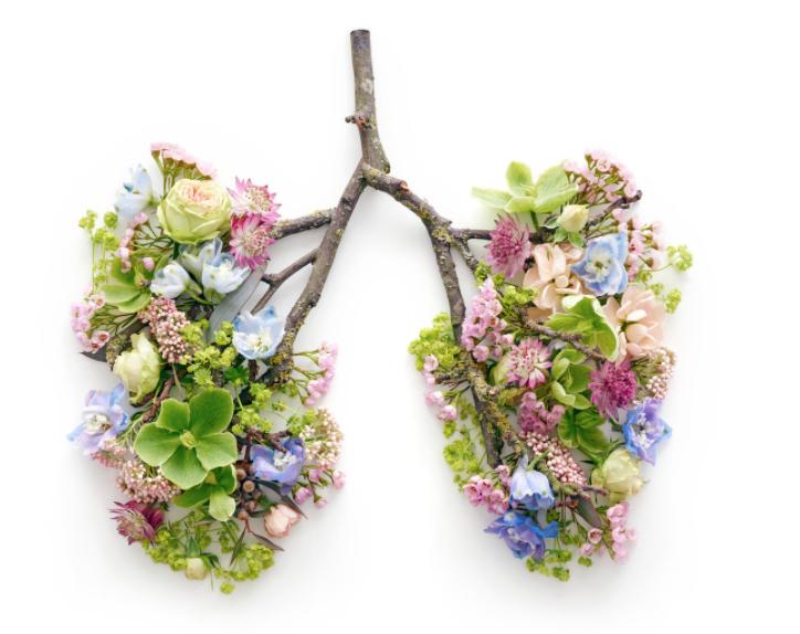 Experience a revitalising breath